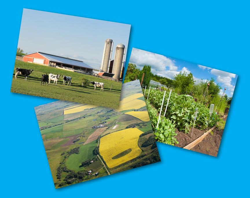 Image showing Food Origin Study prints with photos of a dairy farm, field, and garden.
